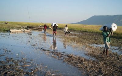 Countrywide baselines in Tanzania, Malawi & Angola