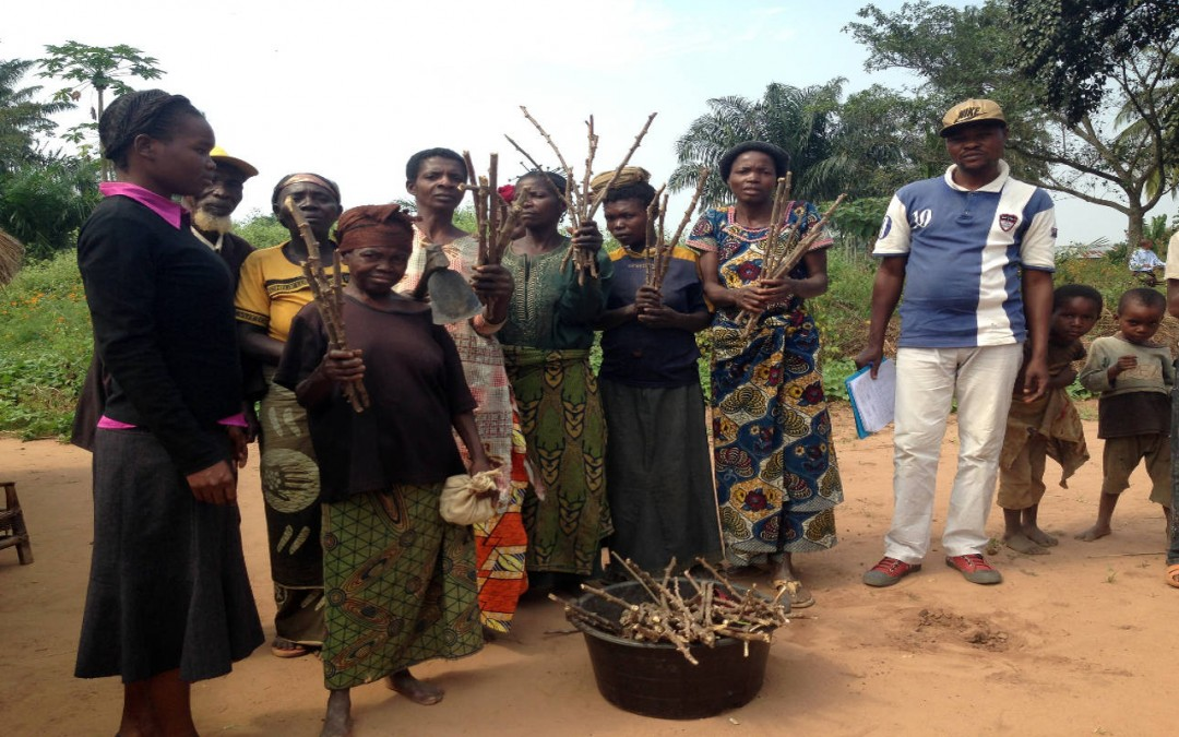 Understanding livelihoods in Kasai Occidental, Democratic Rebublic of Congo