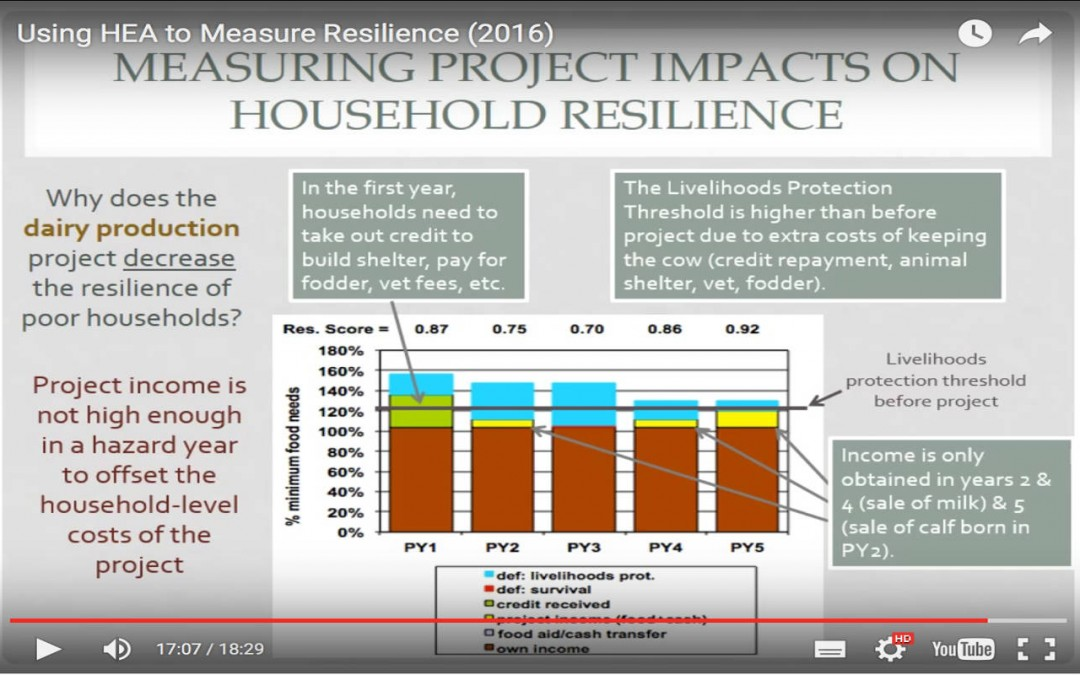 Why might increasing dairy production decrease resilience?